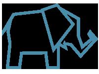 CST Elephant